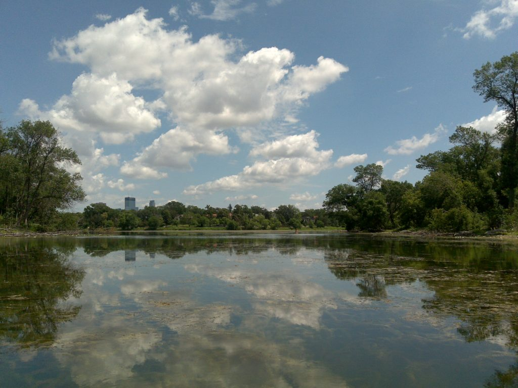 Calhoun Isles, Minneapolis, MN Homes for Sale